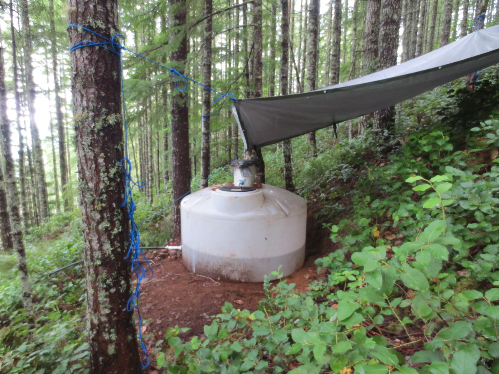 off grid rain water collection