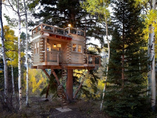 Very Special Log Cabin Tree House in Colorado