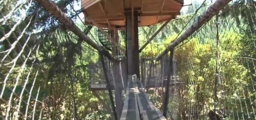 Treehouse Inventor Creates Ewok world – Video
